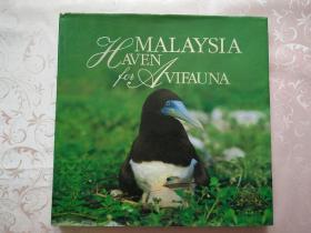 MALAYSIA-HAVEN FOR AVIFAUNA(马来西亚-鸟类天堂)外文原版 精装12开铜版纸画册
