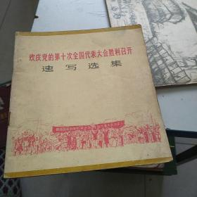 欢庆党的第十次全国代表大会胜利召开速写选集