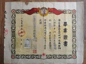 """解放初期大尺寸""""东北电业管理局沈阳技工学校毕业证书"""""""