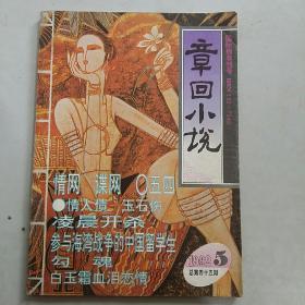 章回小说1992.5