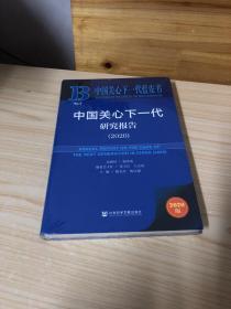 中国关心下一代研究报告2020