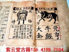 【明末清初】中医;【元亨牛经大全】穴位图册,手稿,全套    #5488