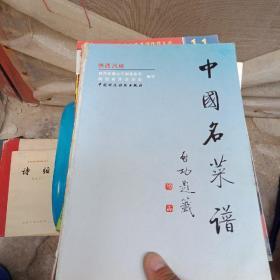 中国名菜谱:陕西风味