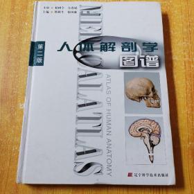 人体解剖学图谱 (第二版) 精装