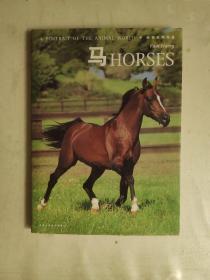动物世界写真:马