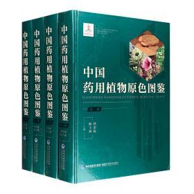 全新正版:《中国药用植物原色图鉴》精装全4册,16开铜版纸全彩,近6000幅植物和药材图,直观呈现811种常用药用植物的形态特征及鉴别要点,图片清晰、特征明显、易于甄别。