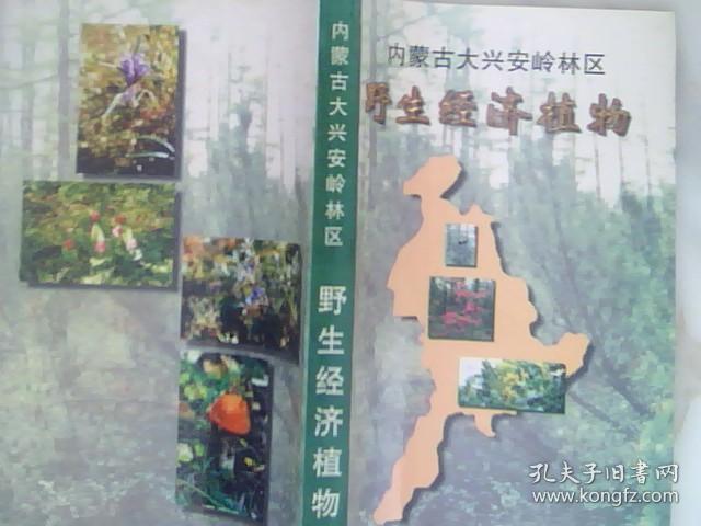 内蒙古大兴安岭林区野生经济植物