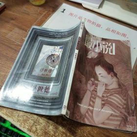 最小说 2009 17