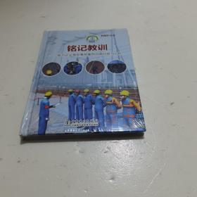铭记教训电力企业典型事故案例动画回放与分析1DVD一ROM塑封未拆