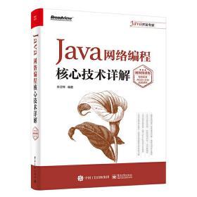 Java网络编程核心技术详解:视频微课版 孙卫琴 9787121383151 电子工业出版社 正版图书