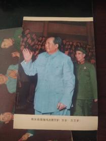伟大的领袖毛主席万岁(四张)