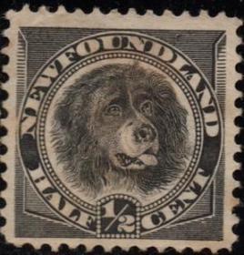 英联邦邮票C,纽芬兰1887年狗,交通运输守卫游泳救援工作宠物犬9