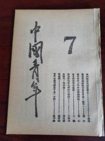 中国青年第七期,新青年共产党向导周报布尔塞维克群众周刊每周评论,民国旧报纸,民国共产党资料,红色刊物博物馆资料