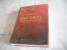山西煤炭工业志:汾西矿业集团志