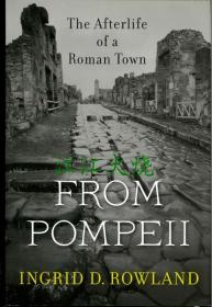 From Pompeii The Afterlife of a Roman Town