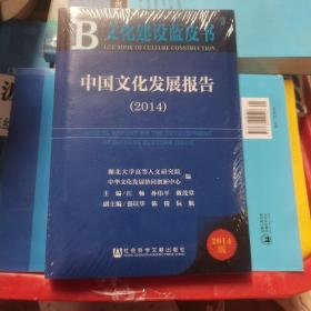 文化建设蓝皮书:中国文化发展报告(2014)