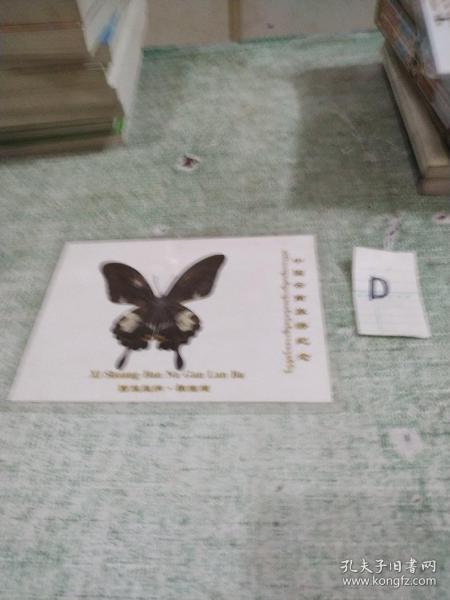 蝴蝶标本::西双版纳 橄榄坝 (带塑封护套)