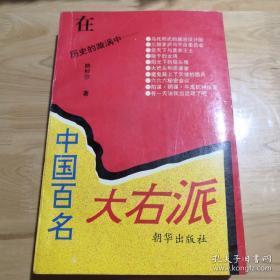 在历史的漩涡中: 中国百名大右派