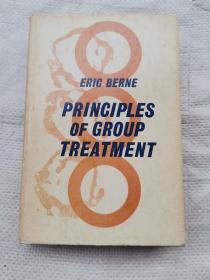 Principles Of Group Treatment  ( 集体治疗原则 )