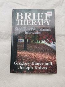 BRIEF   THERAPY  Short_Term Psychodynamic Interven ( 短期心理动力学干预 )