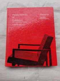 Fundamentals of Guidance  Fourth Edition  ( 指南基础第四版)
