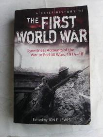 A Brief History of the First World War: Eyewitness Accounts of the War to End All Wars, 1914-18     英文原版