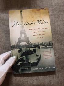 Paris Under Water: How the City of Light Survived the Great Flood of 1910 一九一零年水灾差点摧毁巴黎,绝境迫使有着种种宗教冲突、文化差异的巴黎人联合起来,最终拯救了这座城市,也为四年后更可怕的一战做了动员准备【英文版】