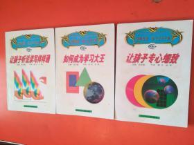 忠魁智教--成功父母方案:让孩子专心细致,如何成为学习大王,让孩子听说读写样样通(三本合售)