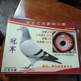 湖北江茂赛鸽公棚[2016年度]