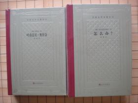 【毛边 网格本】叶甫盖尼·奥涅金 怎么办? 2种2册合售(精装 人民文学出版社 外国文学名著丛
