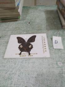 蝴蝶标本::西双版纳 橄榄坝(带塑封护套)