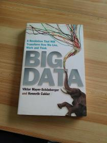 Big Data: A Revolution That Will Transform How We Live, Work and Think大数据时代 英文原版
