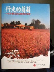 行走的葡萄:11位中国记者法国酒庄探秘(何龙  著)
