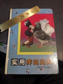 实用养鸽词典