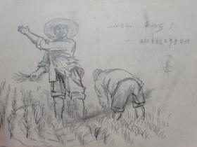 早期老铅笔素描画稿一批,  画于60-70年代