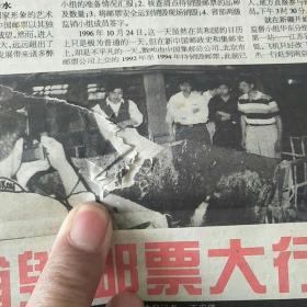 中国集邮报 1996全年的,第1-52期 总第184-235期