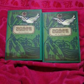 世界儿童文学丛书:骑鹅旅行记(上下)