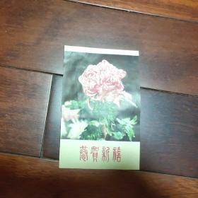 团菊~恭贺新禧贺卡(A区)