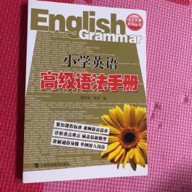 语法手册系列丛书:小学英语高级语法手册