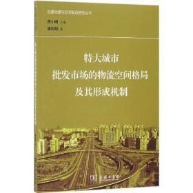 特大城市批发市场的物流空间格局及其形成机制/交通地理与空间规划研究丛书