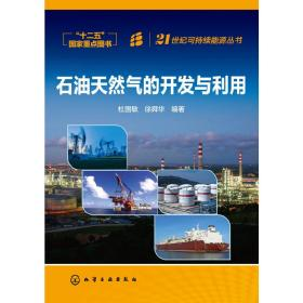 21世纪可持续能源丛书:石油天然气的开发与利用