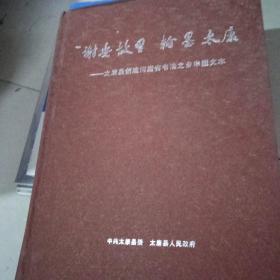 谢安故里翰墨太康--太康县创建河南省书法之乡申报文本