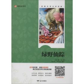 绿野仙踪/大视野阅读