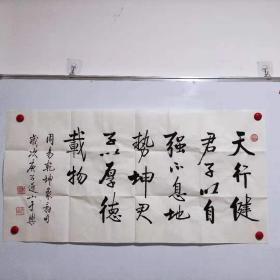 北京师范大学启功书院院长 于乐书法【天行健】包中通快递