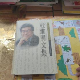 杜维明文集 第三卷