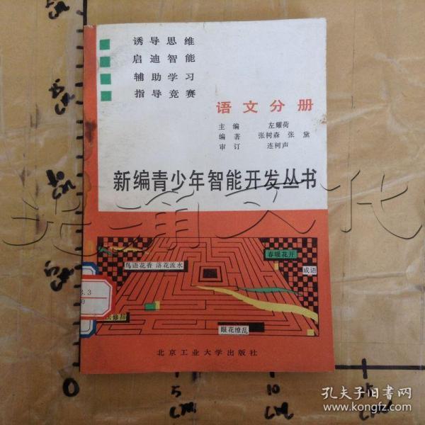 新编青少年智能开发丛书.语文分册