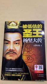 被低估的圣王——杨坚大传
