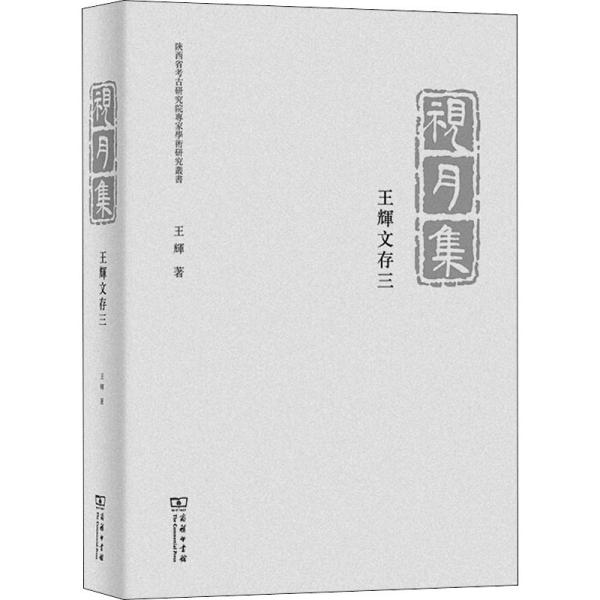 视月集——王辉文存三