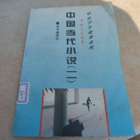 中国当代小说二