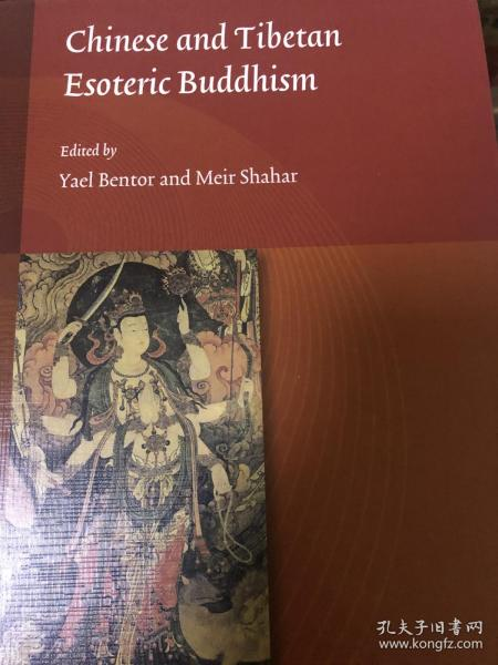 Chinese and Tibetan Esoteric Buddhism (Studies on East Asian Religions 东亚宗教研究系列丛书